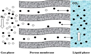 An Experimental Study PVDF and PSF Hollow Fiber Membranes for Chemical Absorption Carbon Dioxide